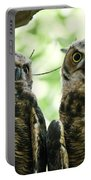 Portrait Of A Pair Of Owls Portable Battery Charger