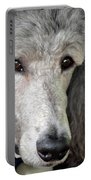 Portrait Of A Silver Poodle Portable Battery Charger