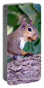 Portrait Of A Squirrel Portable Battery Charger