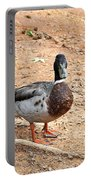 Portrait Of An Alabama Duck 2 Portable Battery Charger