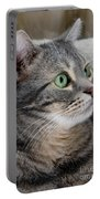 Portrait Of An Ameriican Shorthair Cat Portable Battery Charger