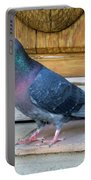 Posing Pigeon  Portable Battery Charger