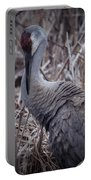 Posing Sandhill Crane Portable Battery Charger