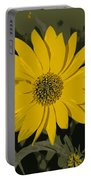 Posterized Smooth Oxeye Portable Battery Charger