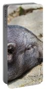 Potbelly Pig Portable Battery Charger