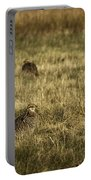 Prairie Chickens After The Boom Portable Battery Charger by Thomas Young