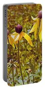 Prairie Coneflowers In Pipestone National Monument-minnesota  Portable Battery Charger