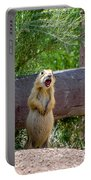 Prairie Dogs In Bryce Portable Battery Charger