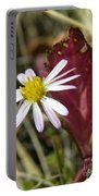 Prairie Flower And Red Lambs Quarter Portable Battery Charger