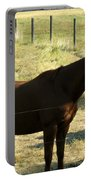 Prarie Stallion In The Shade Portable Battery Charger by Barbara Griffin