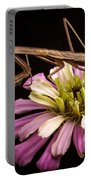 Praying Mantis On Zinnia Portable Battery Charger