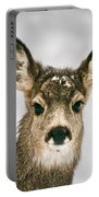 Precious - Mule Deer Fawn - Casper Mountain - Casper Wyoming Portable Battery Charger