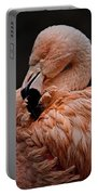 Preening Portable Battery Charger