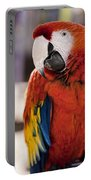 Pretty Bird 2 Portable Battery Charger