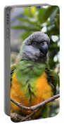 Pretty Bird Portable Battery Charger