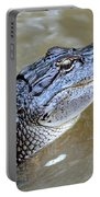 Pretty Gator Portable Battery Charger