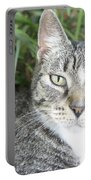 Pretty Kitty Portable Battery Charger