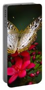 Pretty Little Butterfly  Portable Battery Charger