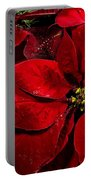 Pretty Poinsettias  Portable Battery Charger