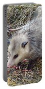 Pretty Possum Portable Battery Charger