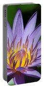 Pretty Purple Petals Portable Battery Charger