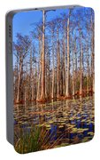 Pretty Swamp Scene Portable Battery Charger
