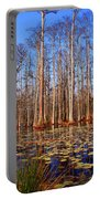 Pretty Swamp Scene Portable Battery Charger by Susanne Van Hulst