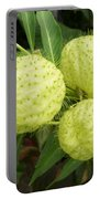 Prickly Balloon Plant Portable Battery Charger