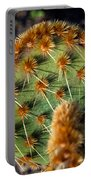Prickly Cactus Leaf Green Brown Plant Fine Art Photography Print  Portable Battery Charger