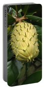 Prickly Fruit Portable Battery Charger