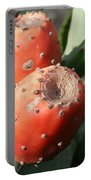 Prickly Pear Cactus Fruit - Indian Fig Portable Battery Charger
