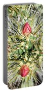 Prickly Pleasure Portable Battery Charger