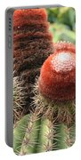 Prickly Situation Portable Battery Charger
