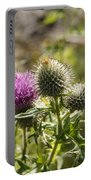 Prickly Youth Portable Battery Charger