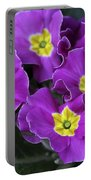Primrose Purple Portable Battery Charger