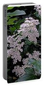 Privet Blossoms 2 Portable Battery Charger