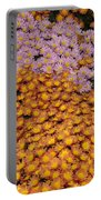 Profusion In Yellows Pinks And Oranges Portable Battery Charger