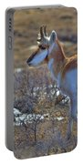 Pronghorn Buck Portable Battery Charger