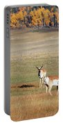 Pronghorn In The Park Portable Battery Charger