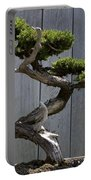 Prostrate Juniper Bonsai Tree Portable Battery Charger