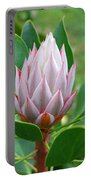 Protea Flower Blossoming Portable Battery Charger