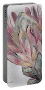 Protea Study 1 Portable Battery Charger