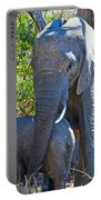 Protective Mother Elephant In Kruger National Park-south Africa Portable Battery Charger