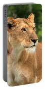 Proud Lioness Portable Battery Charger