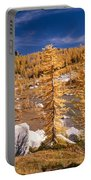 Prusik Peak Above Larch Grove Portable Battery Charger
