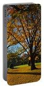 Public Garden Fall Tree Portable Battery Charger