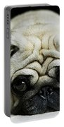 Pug Puppy  Portable Battery Charger