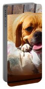 Puggle Lounging Portable Battery Charger