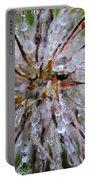 Pulsatilla Vulgaris Flower Design Portable Battery Charger