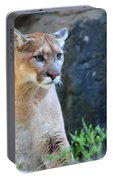 Puma On The Watch Portable Battery Charger